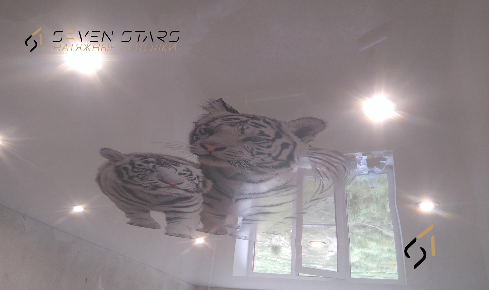 Галерея потолков с фотопечатью 7