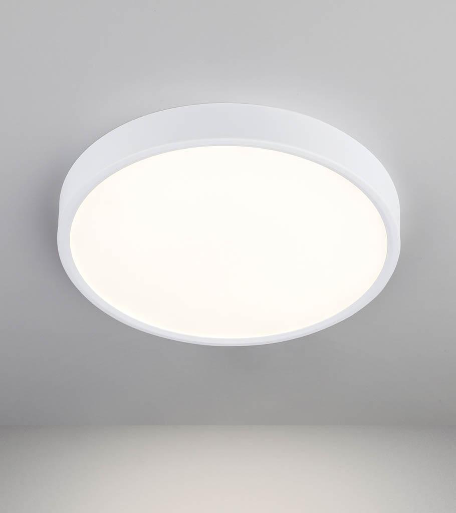 Накладной потолочный светодиодный светильник DLS034 24W 4200K 1